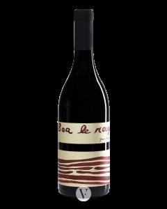 Jean-François Mérieau Touraine Gamay Vieilles Vignes 'Boa Le Rouge' 2014