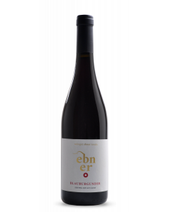 Bottle red wine Weingut Ebner Tenuta Blauburgunder / Pinot Nero 2016