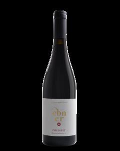 Bottle red wine Weingut Ebner Tenuta Zweigelt 'Weinberg Dolomiten' 2016