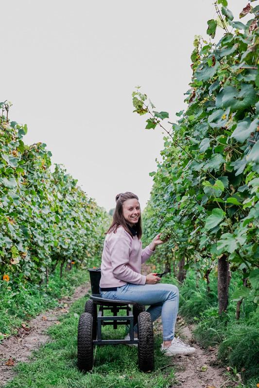 Anke Gees oogst