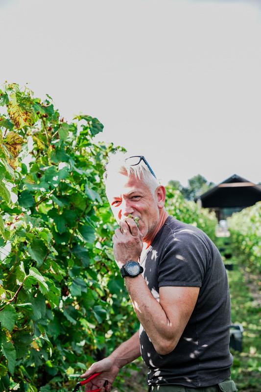 Johan Stoffels oogst